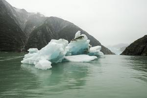 A Large Iceberg Floats in the Waters of Tracy Arm Fjord on a Rainy Day by Jonathan Kingston
