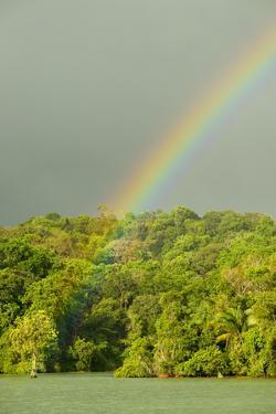 A Rainbow over Barro Colorado Island, Panama by Jonathan Kingston