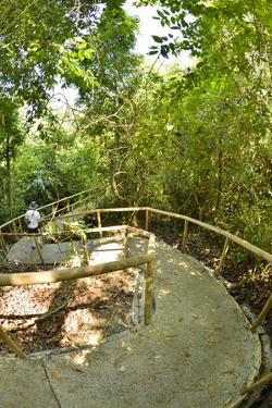 A Tourist Walks Down a Winding Paved Path in Manuel Antonio National Park by Jonathan Kingston