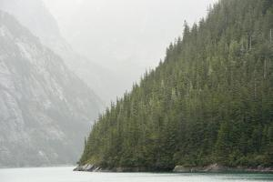 Magnificent Cliffs Rise Out of the Waters Tracy Arm Fjord on a Rainy Day by Jonathan Kingston