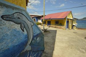 Painted Mural of a Dolphin on the Side of Colorful Houses on Taboga Island by Jonathan Kingston