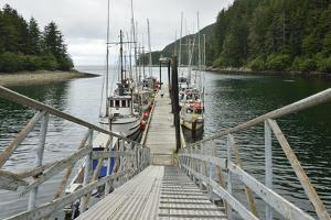 Small Commercial Fishing Boats Moored to a Floating Dock by Jonathan Kingston