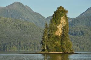 The New Eddystone Rock Formation, Off of a Forested, Mountainous Coast by Jonathan Kingston