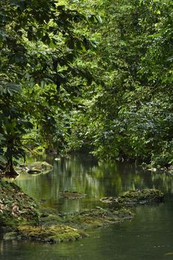 The Pargo River in Corcovado National Park, the Largest Park in Costa Rica by Jonathan Kingston