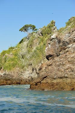 The Rocky Shoreline of Bona Island, Off the Pacific Coast of Panama by Jonathan Kingston