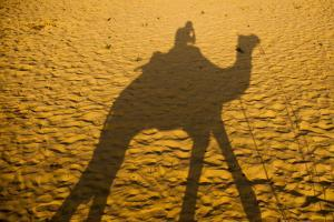 The Shadow of a Man Riding a Camel Cast on the Desert Sand by Jonathan Kingston