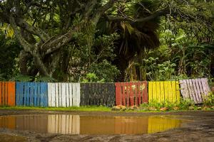 Wooden Shipping Pallets are Re-Purposed into a Colorful Fence on Molokai, Hawaii by Jonathan Kingston