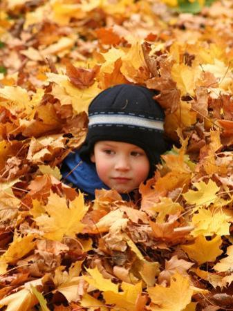 Child Playing in Leaves in Kadriorg Park, Tallinn, Estonia