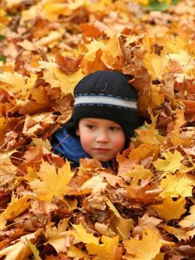Child Playing in Leaves in Kadriorg Park, Tallinn, Estonia by Jonathan Smith