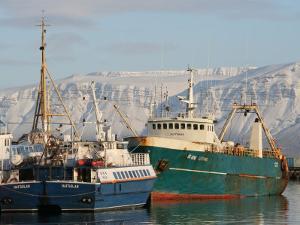 Ships in Reykjavik Harbour, Reykjavik, Iceland by Jonathan Smith