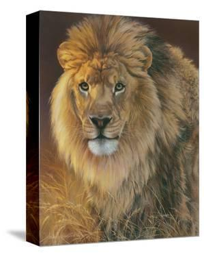 Power and Presence: African Lion by Joni Johnson-godsy