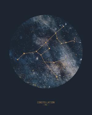 Constellation - UMA by Joni Whyte