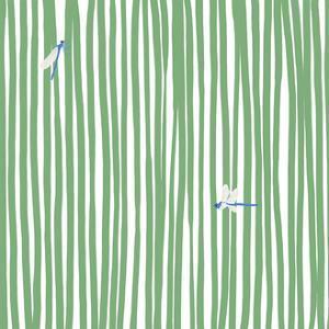 Dragonflies in Stripes by Jorey Hurley