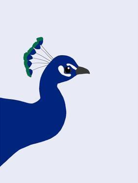Peacock by Jorey Hurley