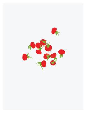 Rose Hips by Jorey Hurley