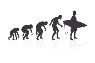 Evolution of the Surfer by jorgenmac