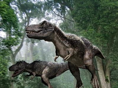 Tyrannosaurus Rex Dinosaurs