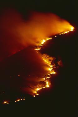 Mediterranean Forest Fire at Night, Spain by Jose B. Ruiz