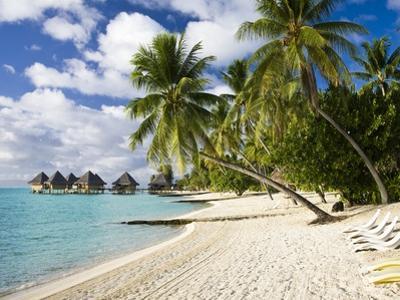 Huts at Matira Beach, Bora Bora Island by José Fuste Raga