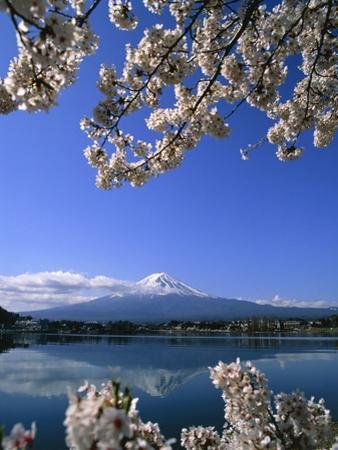 Japan: Mount Fuji and Lake Kawaguchi by José Fuste Raga