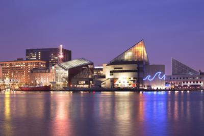 National Aquarium at Inner Harbor, Baltimore, Maryland, USA by Jose Luis Stephens
