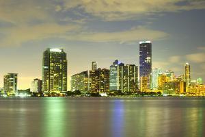 Skyline of Brickell District, Miami, Florida, USA by Jose Luis Stephens