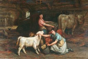 Feeding The Calves by Joseph Denovan Adam