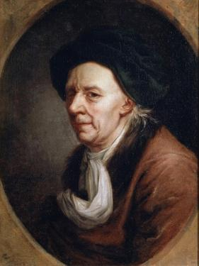 Portrait of the Mathematican Leonhard Euler, (1707-178), German Painting of 18th Century by Joseph Friedrich August Darbes