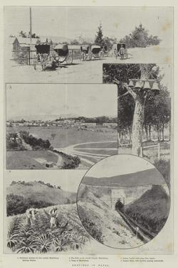 Sketches in Natal by Joseph Holland Tringham