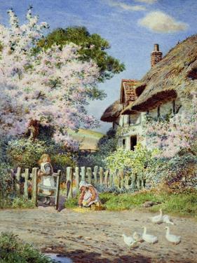 Blossom Time by Joseph Kirkpatrick