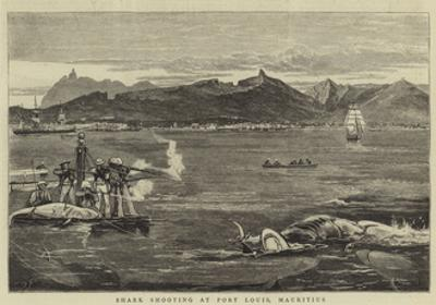 Shark Shooting at Port Louis, Mauritius by Joseph Nash