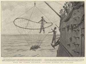 With the Pacific Squadron, Catching Turtles Off Acapulco by Joseph Nash