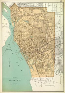 Buffalo, New York, c.1895 by Joseph Rudolf Bien