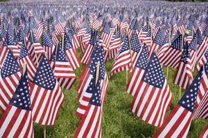20,000 American Flags for Memorial Day, Boston Commons, Boston, MA by Joseph Sohm