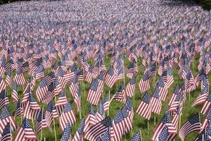 20,000 American Flags for Memorial Day, Boston Commons, Boston, MA by Joseph Sohm