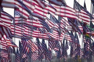 3000 US Flags for 9/11 by Joseph Sohm