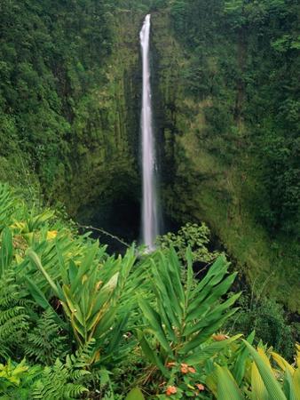 Akaka Falls by Joseph Sohm