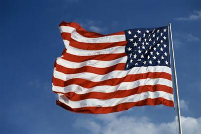 American Flag in the Wind by Joseph Sohm