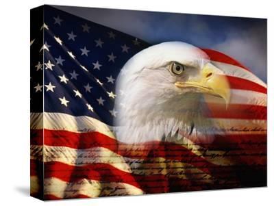 Bald Eagle Head and American Flag