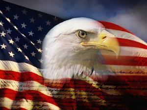 Bald Eagle Head and American Flag by Joseph Sohm