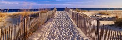 Pathway to the Beach by Joseph Sohm