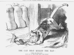 The Cat That Killed the Rat, 1880 by Joseph Swain