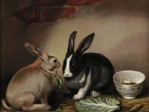 Rabbits by Joseph Thomas Wilson