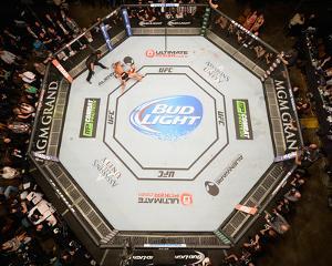 UFC 178 - Johnson v Cariaso by Josh Hedges/Zuffa LLC