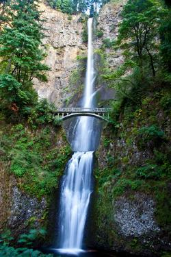 A Scenic View of Multnomah Falls by Josh Howard