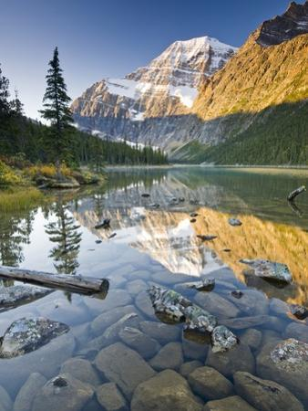 Mount Edith Cavell Reflected in Cavell Lake in Jasper National Park, Alberta, Canada.