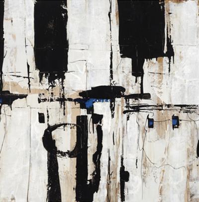 Echo I by Joshua Schicker