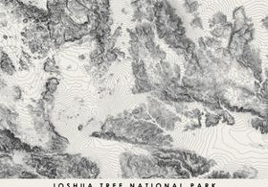 Joshua Tree National Park Topographical Print