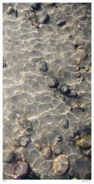 Ocean Ripples III by Joy Doherty