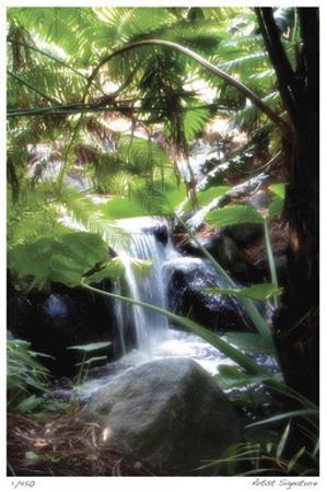 Peaceful Waterfall I